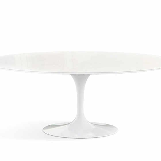 Saarinen Tulip Oval Outdoor Dining Table